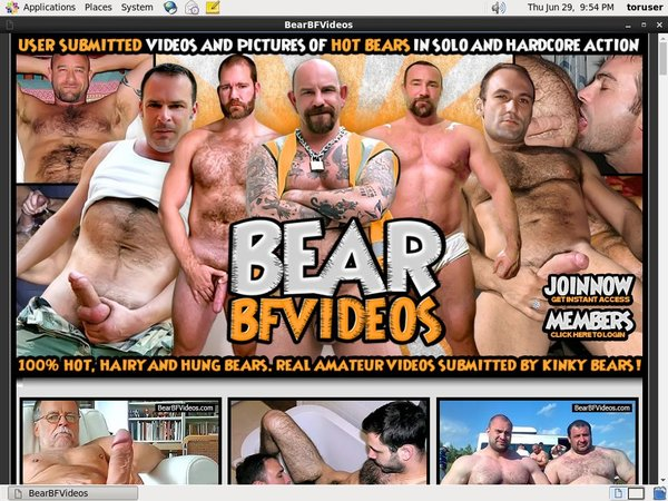 Premium Accounts Bearbfvideos.com