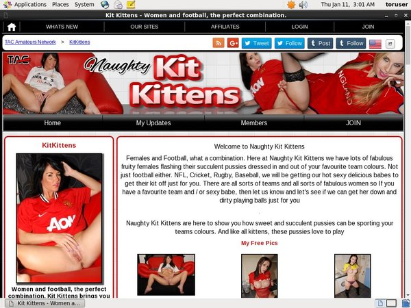 Kit Kittens Paypal Sign Up