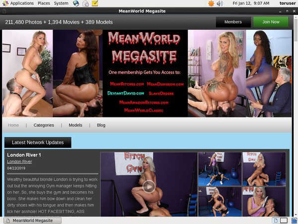 Meanworld Paypal Access