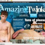 Amazing Twinks Full Movie